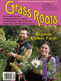 Grass Roots 255 Cover Image